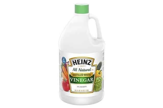 Clean Vomit From Carpet Vinegar Two Birds Home