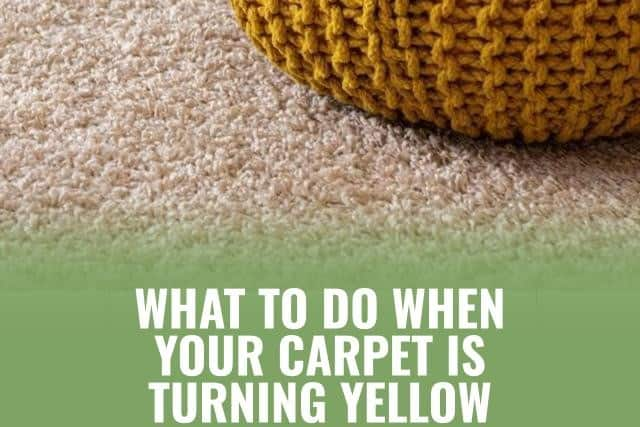 Carpet Turning Yellow after Cleaning? Here's What to Do