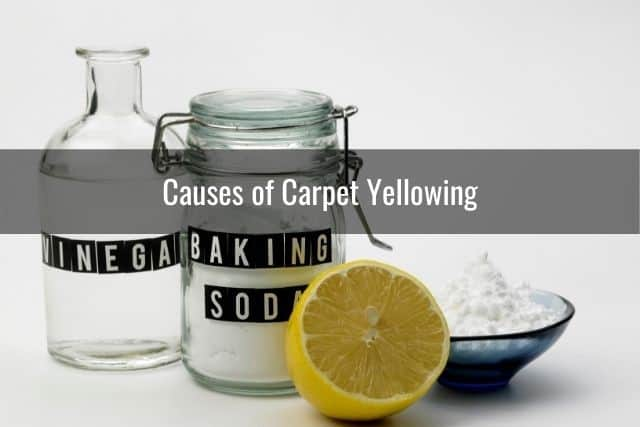 Causes of Carpet Yellowing