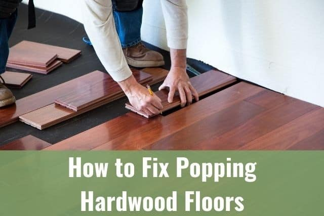 How To Fix Popping Hardwood Floors, Why Does My Laminate Flooring Squeak