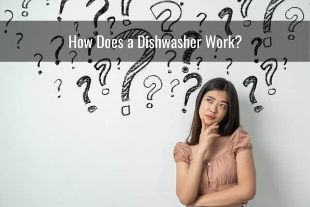 How Does a Dishwasher Work?