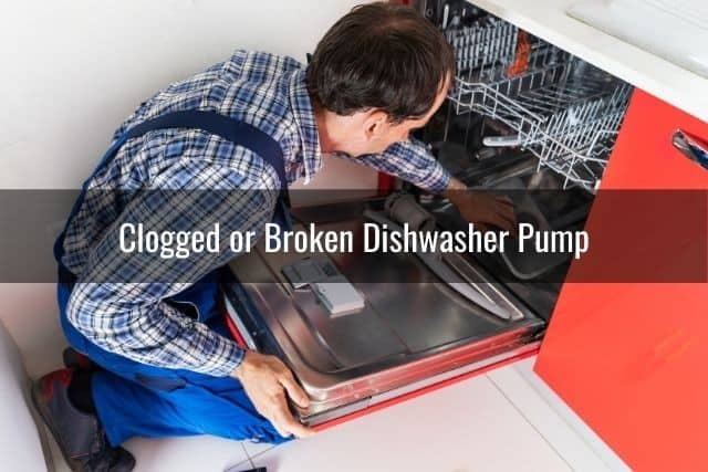Clogged or Broken Dishwasher Pump