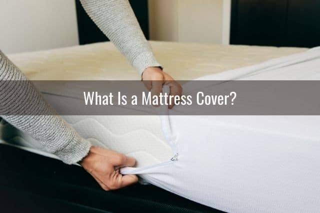 What Is a Mattress Cover?